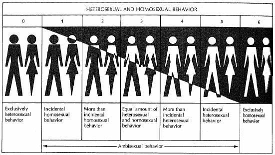 Lý giải định hướng giới tính (đồng tính, dị tính, song tính) | VIET Psychology